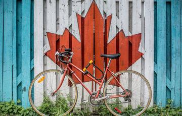 Maple leaf with a bike