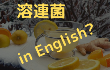 Lemon tea eyecatch