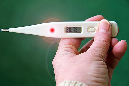 A hand holding thermometer