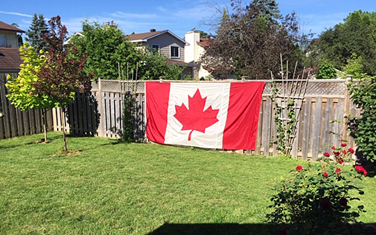 Canadian flag with roses