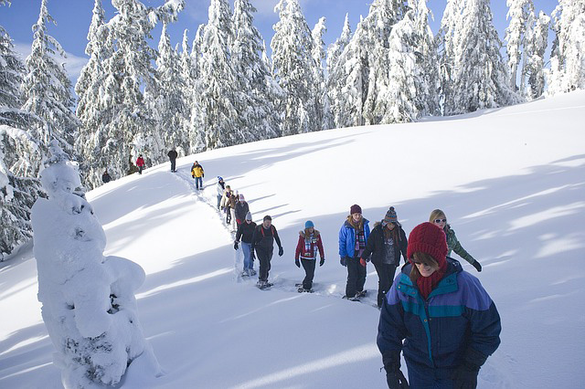 snow shoe walking in a group