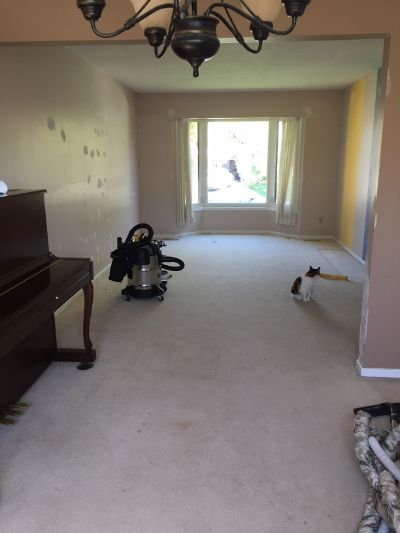 カナダの家 カーペットの床